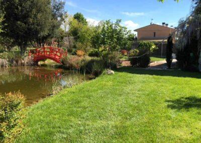 Mantenimiento y cuidado de jardines
