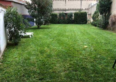 Mantenimiento y diseño de jardines